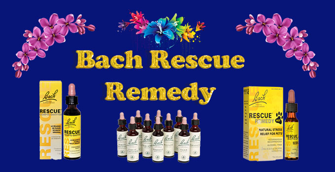 Bach's Flower Essences