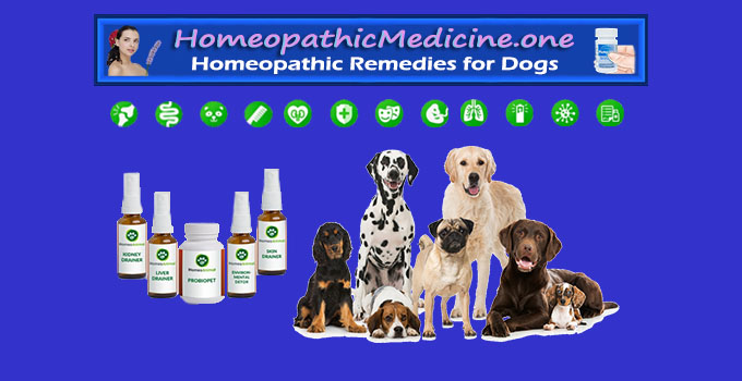 homeopathic remedies for dogs with diarrhea