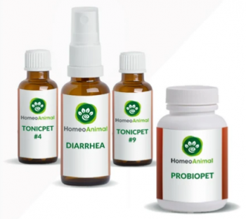homeopathic remedy for dog diarrhea